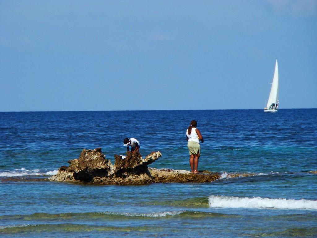 4. Bahía de las Flores. Autor, Intimaralem85