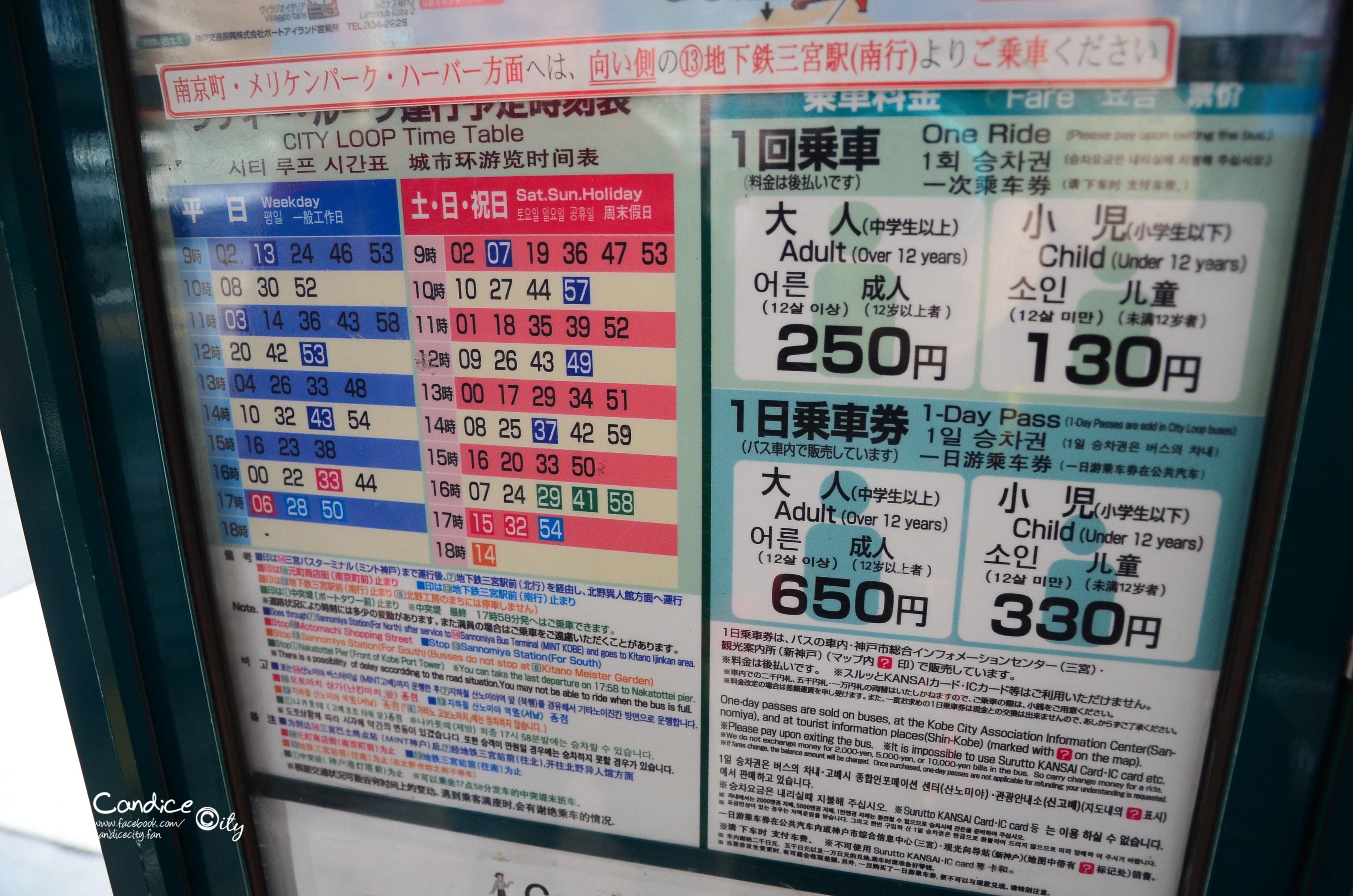DSC_4718.JPG