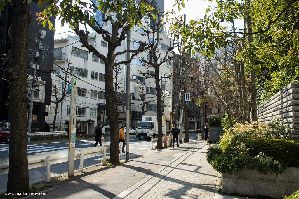 Per le vie di Tokyo