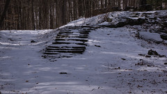 Steps to Madame Sherri's Castle
