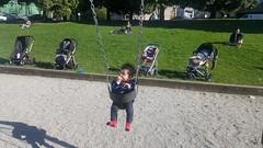 Swings and Strollers