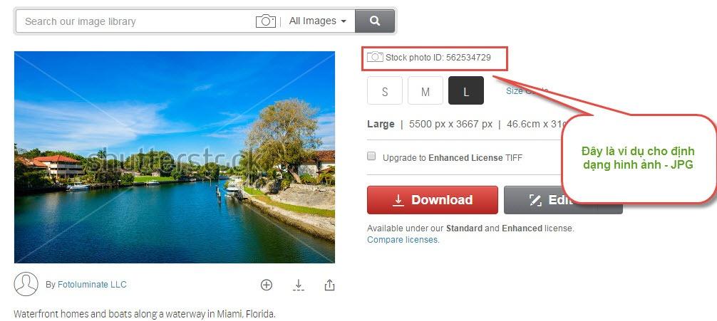 Dịch vụ mua bán hình ảnh Shutterstock chất lượng cao bán hình ảnh shutterstock - Dịch vụ mua bán hình ảnh Shutterstock chất lượng cao