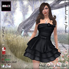 Sophia dress black