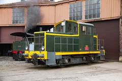 Salon du train miniature (19)