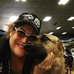 #ServiceDogBusterBrown #fortworthharleydavidson Buster Brown & mom's boy...he's my true love❤️