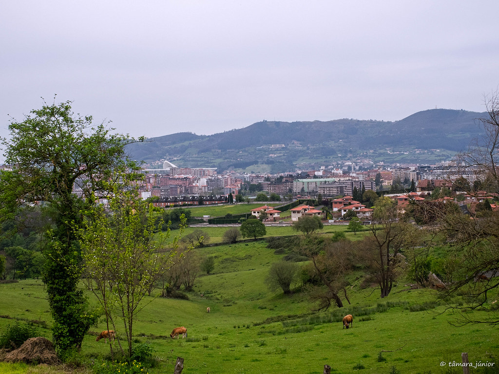 41.- Camino del Salvador-8ª etapa (375)