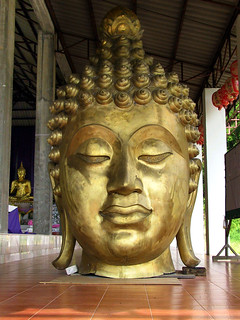 Buddha statues from Thailand and India