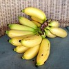 Enjoy #pisang at #Iboih Inn, #Sabang. #nofilter