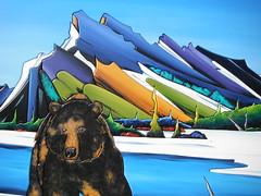 Historic Banff National Park