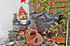 garden gnome, lawn ornament, statue,