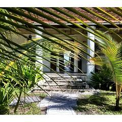 The entrance to @iboisland lodge #moztravel #mozambique #adventure #travel #tips