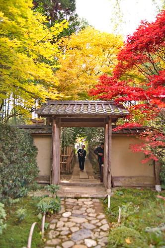 【写真】2012 紅葉 : 厭離庵/2020-10-15/IMGP7843