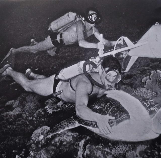 Vintage Photo: 1950s Men Underwater In Scuba Gear