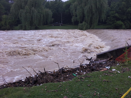 Flood Aftermath in Etienne Brulé Park