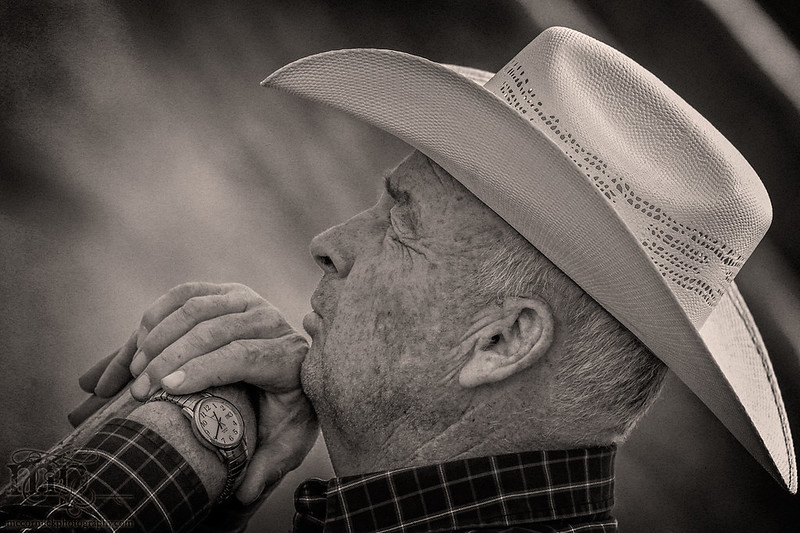 Gooseberry Lake : 4-H Rodeo 2013 : A Watchful Eye