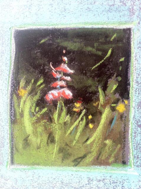 Lundman_wildflowerstudy2