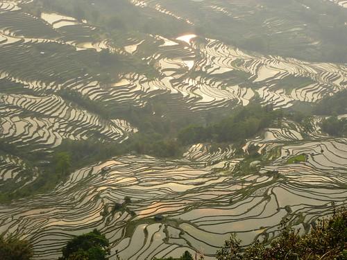 Yunnan13-Yuanyang 24-Bada (17)