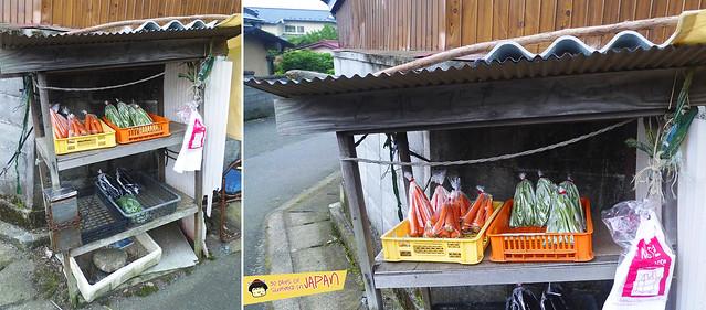 Hiking Mt. Nabewari - day trip from Tokyo - vegetable stalls