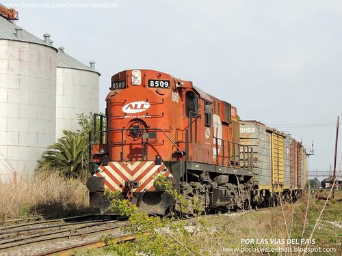 ALCO RSD16 8509