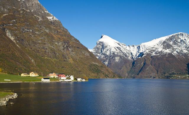 Bjørke in Hjørundfjorden