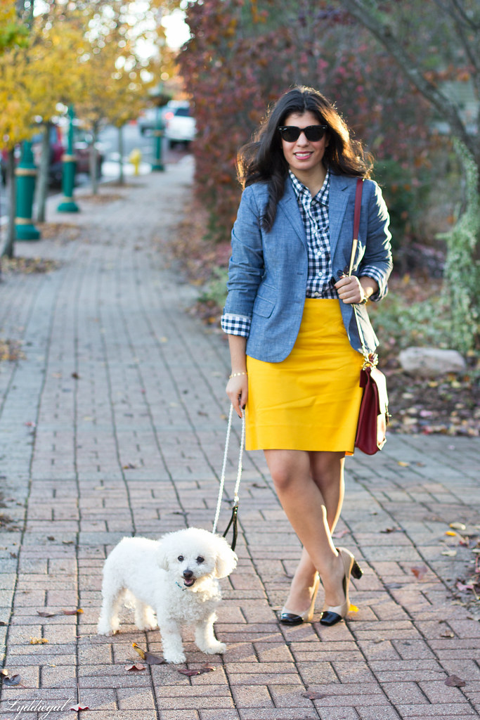 also kind of preppy fall-1.jpg