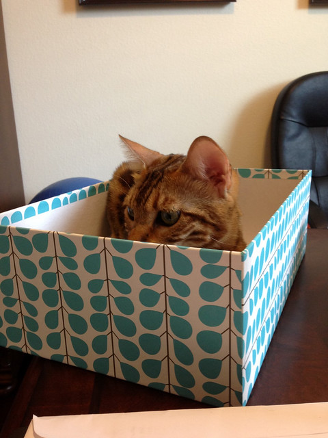 Peaches in a box