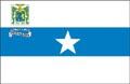 Bandeira da cidade de Parnaíba