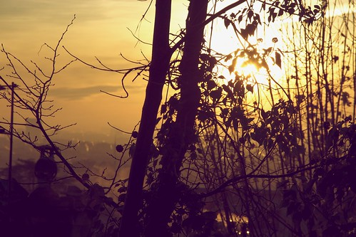 Le Val d'Or au matin
