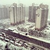 Good luck with that commute... #korea #snow #snowday #blizzard #suwon #homesweethome #traffic