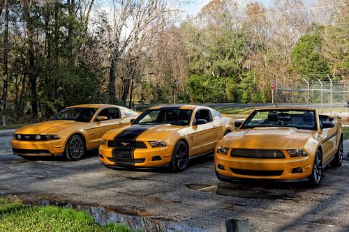 ford car yellow florida pony blaze mustang gt mca npd 2011