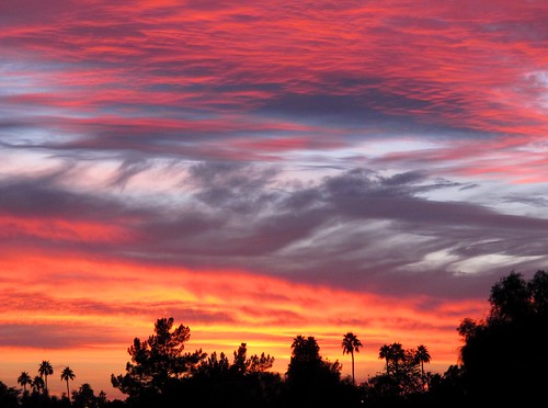 light sunset arizona sky southwest color nature phoenix beauty skyline clouds evening view sundown silhouettes palmtrees skyshow desertsky valleyofthesun azsunset phoenixsky zoniedude1 earthnaturelife canonpowershotg12 conocidopark atmosphericartistry