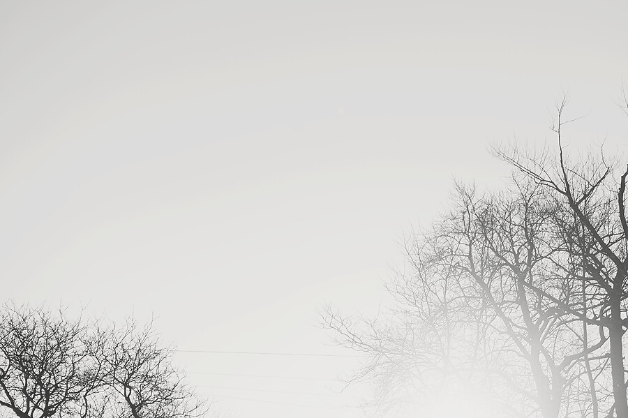 winter-4853web