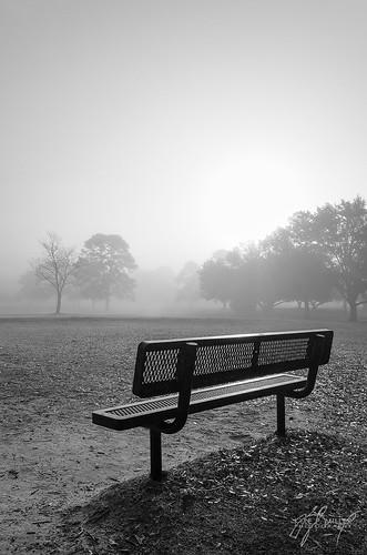 fog sunrise unitedstates florida foggy tallahassee tombrownpark importedkeywordtags thephotographyblog