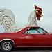 Texas Road Trip Jan 2014 50