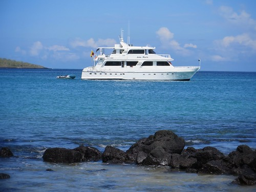 A Last Minute Galapagos Cruise