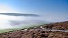 Frost & Fog at Headon Warren - DSCF2193