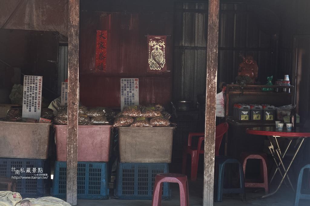 台灣獼猴 (11)