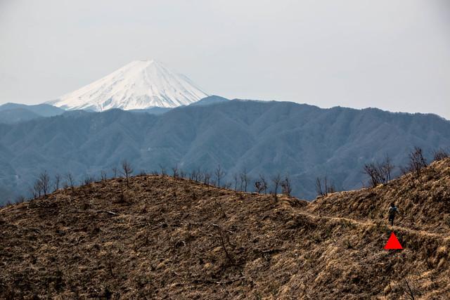20150412-甲州高尾山-0285-Edit.jpg