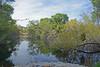 Hassayampa River Preserve,  Palm Lake