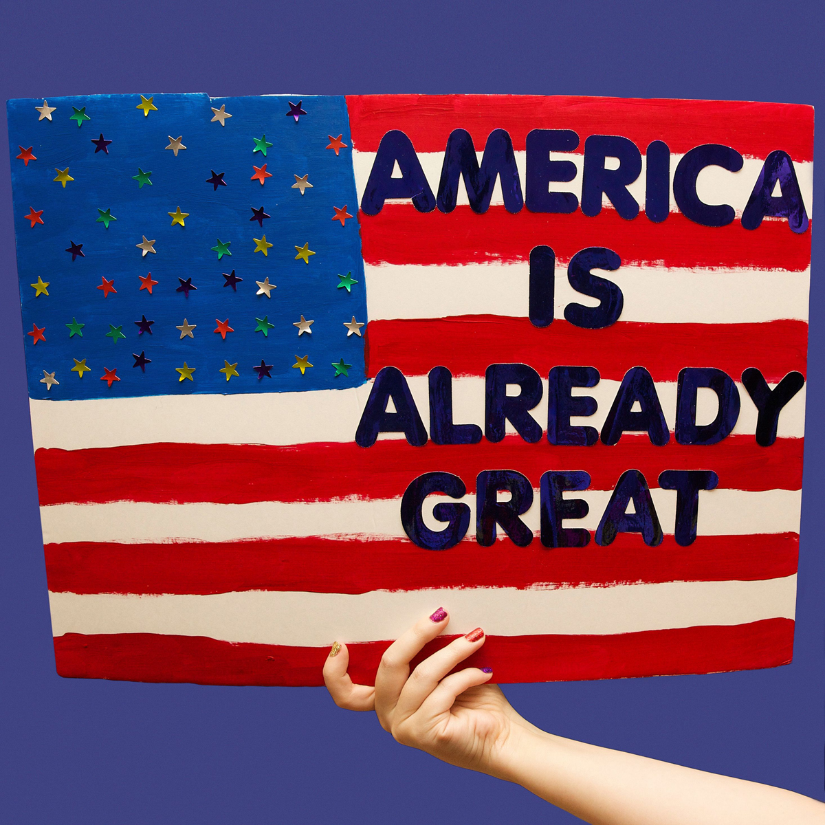 45 Protest Signs_Brandon and Olivia Locher_28_America Is Already Great