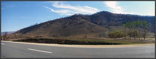 Panorama view of the burnt Mudgegonga Hills, after