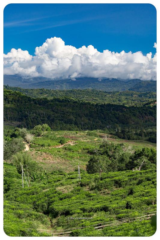 Borneo-20170410-IMG_7214