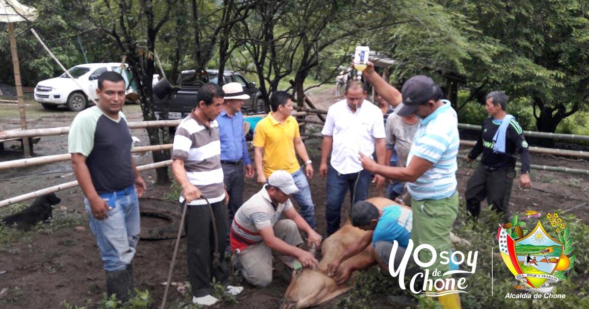Alcaldía de Chone realizó actividad en Las Habras de Canuto