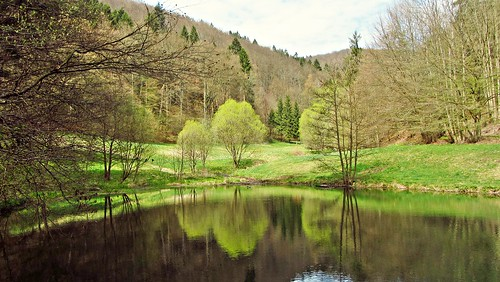 albrechts jacksonlake nature natur see outside wow wonderfulnature germany thüringen deutschland thuringia april easter happyeaster ostern osterspaziergang