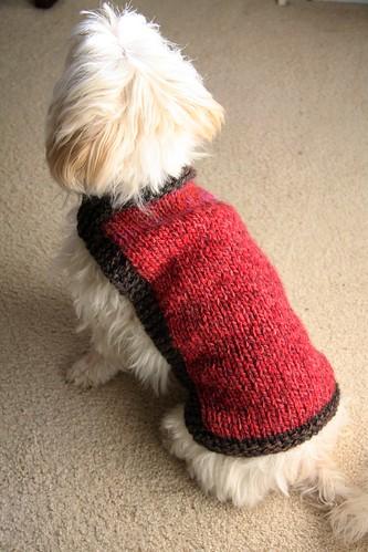 Mia's coat 2