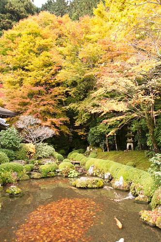 【写真】2012 紅葉 : 寂光院/2020-08-29/IMGP6301