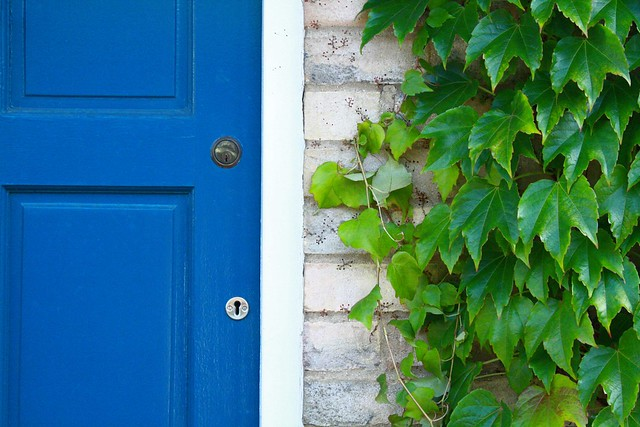 blue door bricks and leaves
