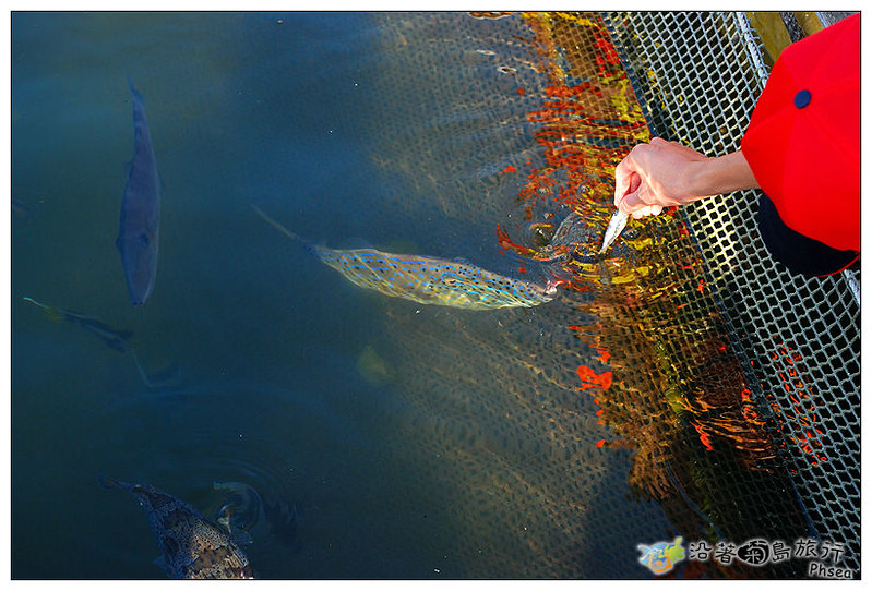 2013元貝休閒漁業_91