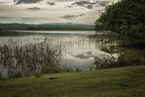 Peaceful Pinar by Rey Cuba