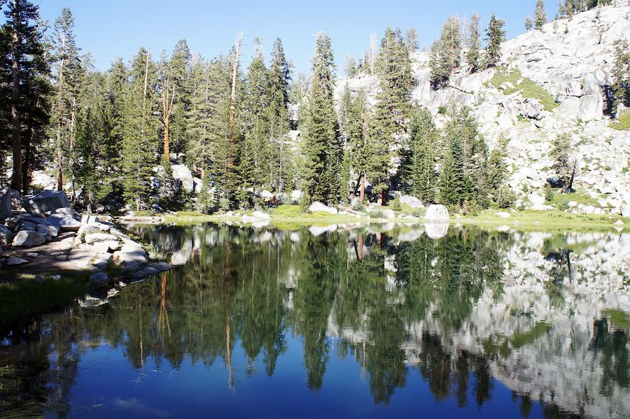 Калифорния 2013 - Редвуд, Кристал кейв, Секвойя парк - авторские путешествия Kartazon Dream